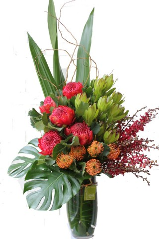 Melbourne's corporate flowers |Corporate flowers service|Flower care|transporting flowers |Caring for phalaenopsis